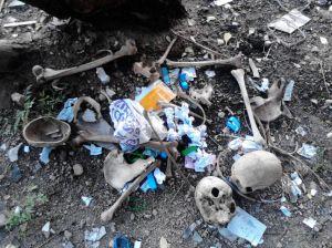 File Photo, 'Bangalore Butcher' Case no.4576234